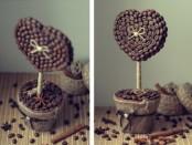Делаем кофейное дерево в домашних условиях