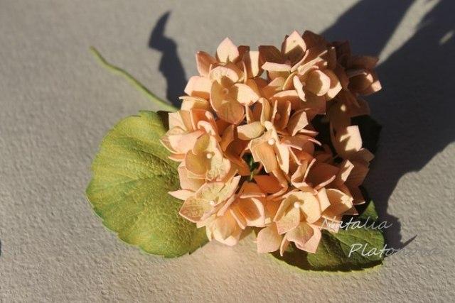 Цветы из фоамирана своими руками: Гортензия