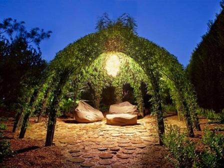 Создать такое место можно при помощи вьющихся растений