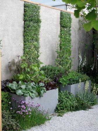 Комбинировать вечнозелёные растения с недолговечными