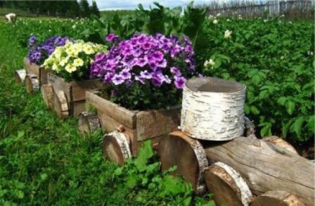 Оригинальные поделки из пней для сада