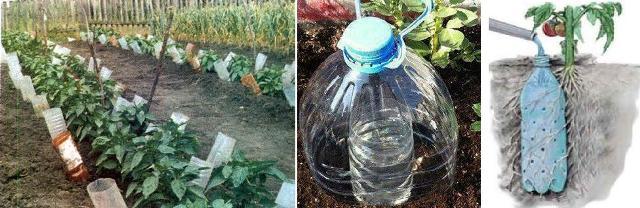организация полива с помощью пластиковых бутылок