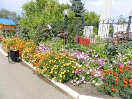 Цветники во дворе своими руками фото 452