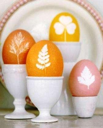 Декорируем яйца зеленью и травами