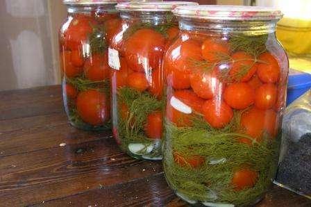Консервация томатов. Рецепты. Фото и видео