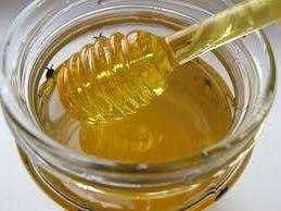 Применять мед нужно ежедневно. Для этого необходимо размешать одну чайную ложку меда в стакане теплой воды или молока.</p> <p> Пить лучше всего натощак. Таким образом лучше усваиваются все полезные свойства меда.» width=»259″ height=»194″/></p></div> </p> <p>Также Кипрейный мед применяется и в косметологии. При нанесении в качестве маски, кожа лица становится более упругой и эластичной, приобретает ровный цвет и шелковистость.</p> <p> С недавних времен его начали добавлять при приготовлении кремов, скрабов и бальзамов.</p> <p> А при проведении банных процедур, накладывают тонким слоем на кожу тела и через некоторое время тщательно смывают. При нанесении на кожу Кипрейный мед очищает поры, сужает их, производя при этом антисептические действия.</p> <p> При образовании ран на коже его также применяют для обеззараживания и скорейшего заживления.</p> <h3>Смотрите видео: Иван чай медонос</h3> <p><iframe data-src=