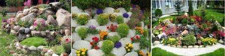 Замечательно на альпийской горке смотрятся стелющиеся низкорослые растения. Также сюда могут подойти такие растения: фиалки, нарциссы и подснежники. А если есть желания, то можно обратить внимание на такие растения, как: барбарис, вереск и можжевельник.