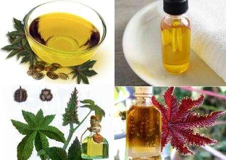 Его используют в производстве мыла, смазочных, гидравлических и тормозных жидкостей, красителей, грунтовок, пластмасс, воска, нейлона, красок, а также для фармацевтических целей и парфюмерии.