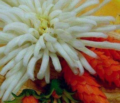 Если у вас есть специальный нож для карвинга, то из пекинской капусты попробуйте сделать хризантему. Начинайте вырезать лепестки с края и постепенно приближайтесь к центру кочана.