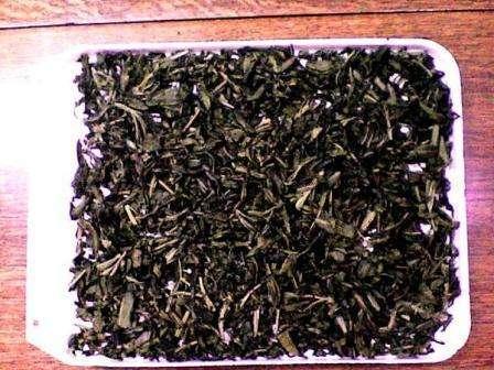 Сбор и правильная сушка иван-чая