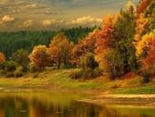 Осенние поделки, фото подборка