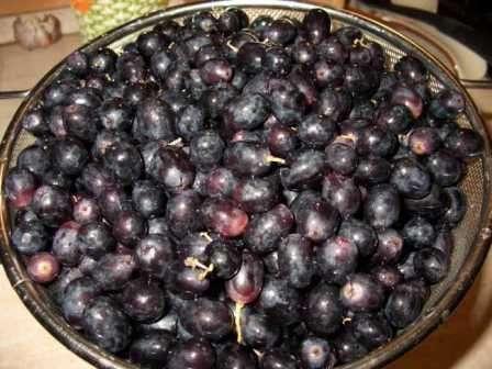 Также существует метод сушки ягод винограда с помощью духовки