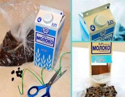 Изготовляем кормушку из коробки из-под сока, молока: