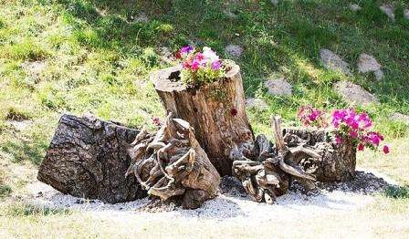 Идеальный вариант для дачника, столкнувшегося с вырубкой старого сада и посадкой нового!