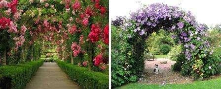 красивые садовые арки