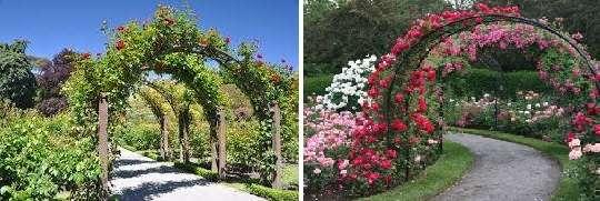 На самом деле, каких-то формальных норм или канонов, касающихся возведения входной арки, украшенной цветами, не существует. Главное – чтобы вход гармонировал с внутренним убранством!