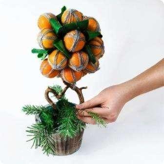 Вариант 2. Мандариновое дерево своими руками