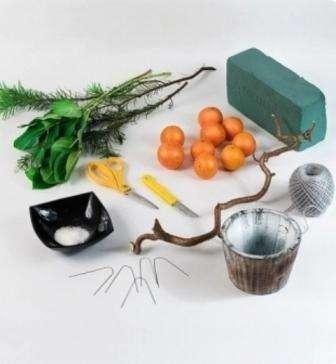Итак, что же вам понадобится для создания мандаринового дерева: