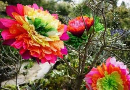Такие цветы можно использовать для декорирования помещения или создания свадебной цветочной арки