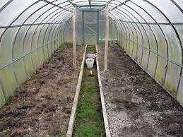 Пожалуй, дезинфекция поверхности почвы – самый сложный, требующий больших усилий этап обработки теплицы. Для очищения небольшого по площади участка земли его поливают несколькими ведрами крутого кипятка, что позволяет убить достаточное количество микроорганизмов.