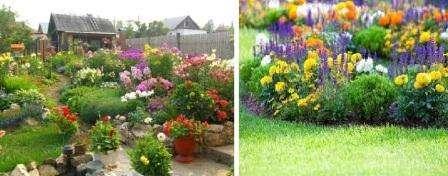 На переднем плане цветника посадите первоцветы, а дальше – многолетники. В начале лета начинают красиво цвести анютины глазки и примулы, при этом они хорошо уживаются в одной клумбе с фиалками и нежными маргаритками.