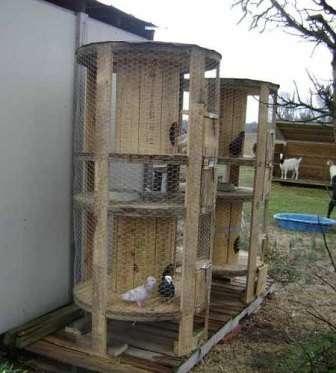 Любители домашнего хозяйства могут использовать бобины от проводов для курятника или голубятни.</p> <p> Вам нужно будет только продумать проем для входа и выхода и обмотать конструкцию сеткой Рабица. В таком домике можно даже разводить кроликов.» width=»336″ height=»373″/></p></div> </p> <p>Сегодня владельцы современных квартир меняют деревянные окна на пластиковые. Не спешите выкидывать старые окна, попробуйте сделать из них открытую беседку.</p> <p> Если по ней пустить вьющуюся розу или клематис, то у вас получится организовать уютный уголок для отдыха на даче.</p> <p> Тень от растений спасет в знойную летнюю жару.</p> <p><div style=