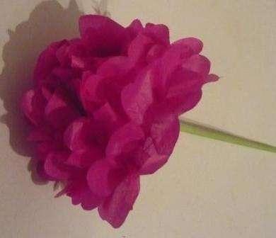 Цветы из цветной бумаги: легкие пошаговые фото, для детей
