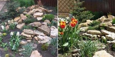 Горка будет смотреться оригинально, если высаженные виды многолетних растений имеют различные периоды цветения. Очень красиво будет смотреться альпийская горка рядом с небольшим прудом или фонтанчиком.
