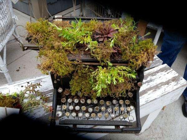 Старая печатная машинка превратится в садовую поделку, если засыпать ее частично землей и засадить растениями.