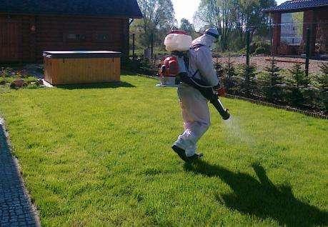 Инсектициды широко применяются в борьбе с клещами, но при этом могут нанести вред здоровью человека.