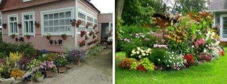 Дизайнеры, учитывая общую стилистику садового участка, предлагают несколько способов оформления цветников. Например, регулярный или ландшафтный цветни