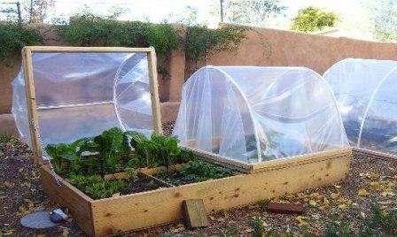 Фото новых поделок для сада