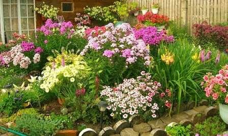 Как оформить цветник перед домом, фото