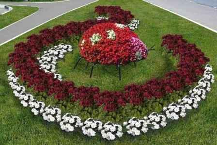 Цикламены, при умеренной зиме, радуют своими цветами с декабря по февраль. Декоративные кусты цикламены прекрасно украсят любую клумбу зимой