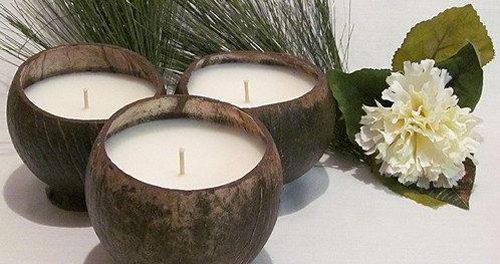 поделка из скорлупы кокоса своими руками