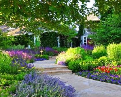 Цветники в саду частного дома, фото. Клумбы, цветущие все лето