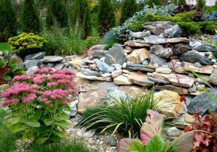Рокарий или каменный сад