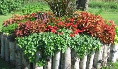 Цветники во дворе своими руками фото 949