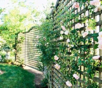 Арки для плетистых роз имеют меньшие размеры и отличаются изогнутыми формами. Их можно устанавливать у входа в сад