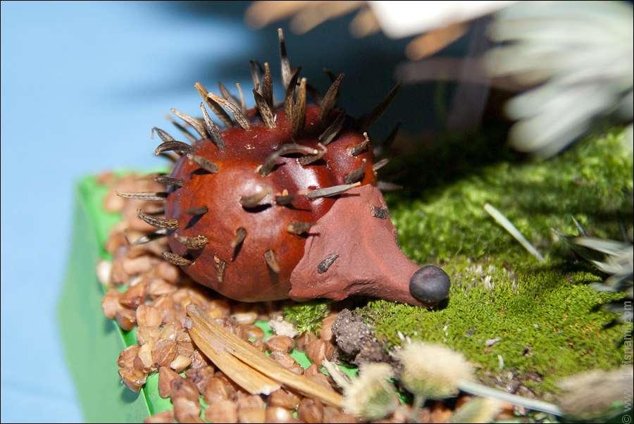 Из коричневого каштана сделаем тело ежика. Внутрь можно приклеить пластилин для плотности, а можно использовать просто целый каштан.