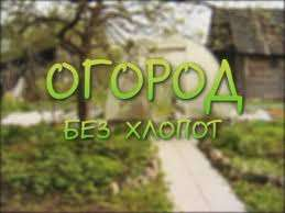 Огород без хлопот для пожилых. Видео и фото, полезные советы по выращиванию