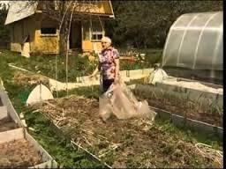 Может возникнуть вопрос: зачем тратить своё время и силы на выращивание овощей и зелени, если можно купить всё в ближайшем супермаркете? Домашний огород для пожилых имеет ряд плюсов, которыми не обладают супермаркеты с их продукцией.