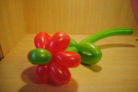 После того как вы окончательно освоите технику изготовления цветов-ромашек из воздушных шаров, можете приступить к более сложным фигурам и полностью освоить искусство твистинга. Моделирование цве