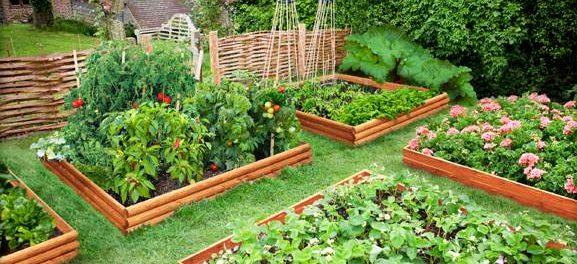 Сад, огород и дача все самое яркое и интересное своими руками