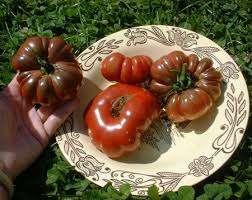 На рассаду семена томата Американский ребристый сеют за два с небольшим месяца до пересадки подросших растений в открытую почву. Пикирование проводят, когда у рассады появилось два настоящих листика. Если планируется формирование куста в две-три ветви, то на одном квадратном метре высаживают тр