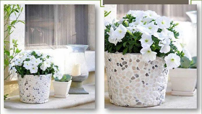 недорогие кашпо для цветов