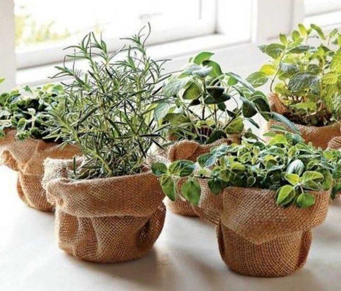 как сделать вазу для сада
